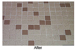 The Hygienic Home's Steam Cleaning of Grout And Tile Eliminates Dirt, Germs, Mold And Mildew