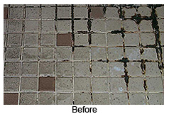 Tile Floors Can Accumulate Dirt, Germs, Mold, And Mildew
