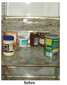 Refrigerators, Coolers And Freezers Can Contain Contaminants, Spilled Food, Mold, Or Mildew