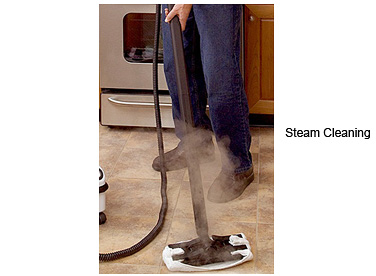 Pure Water Vapor Steam Cleaning Is An Eco-Friendly, Green Method For Eliminating Household Germs And Bacteria